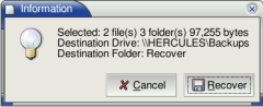 Files selected for recovery